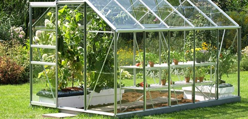 Ideas para crear un invernadero en casa for Construccion de viveros e invernaderos