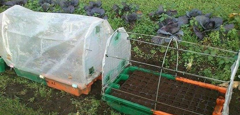 Invernadero reciclado