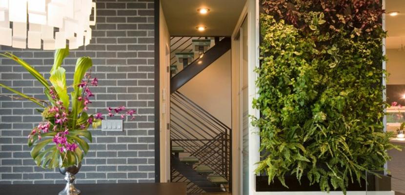 Disfruta de un original jard n vertical en tu hogar for Jardines de hogar
