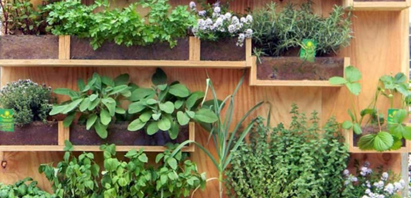 Jardines con macetas
