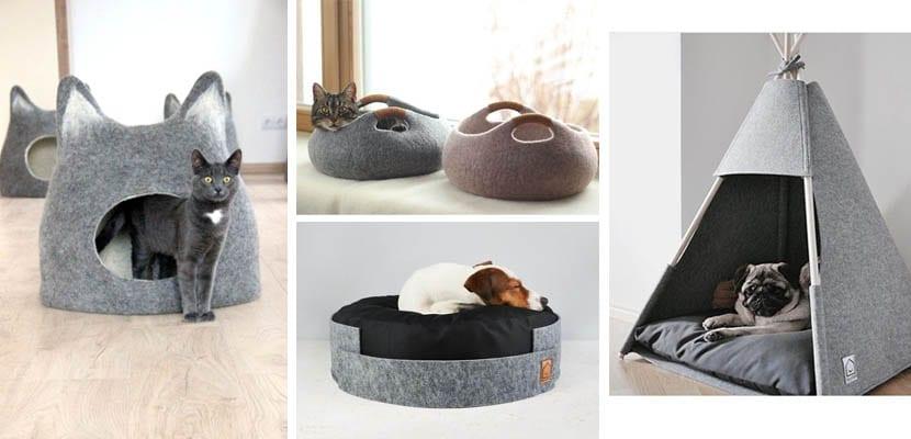 Camas de fieltro para gatos y perros