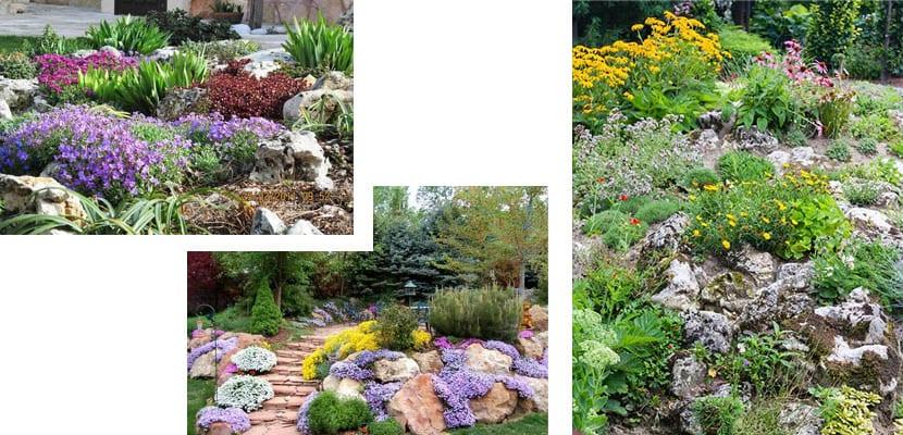 Jardín de rocallas