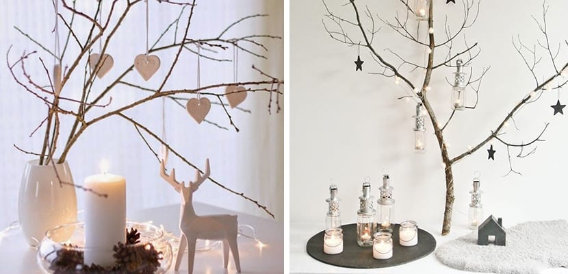 Árboles con ramas