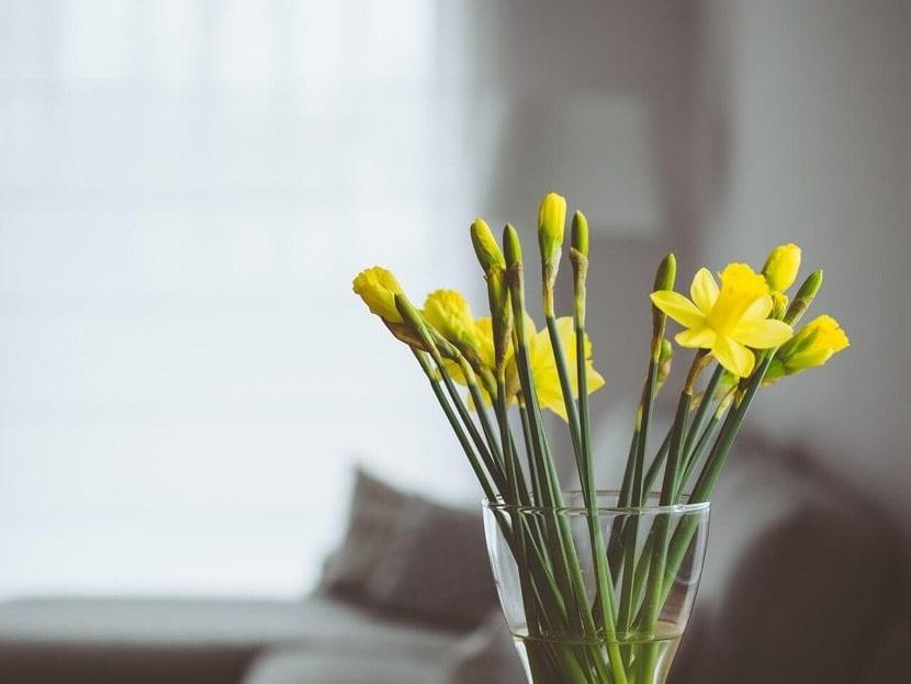 ambientador casero con flores