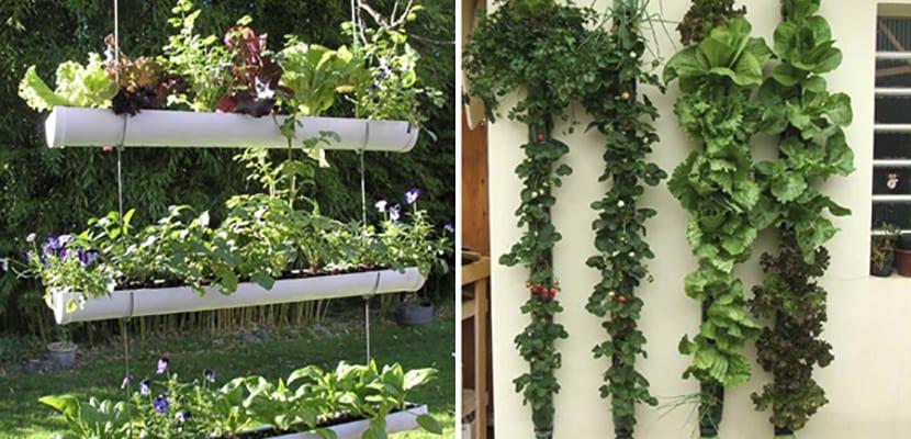 Jardines caseros