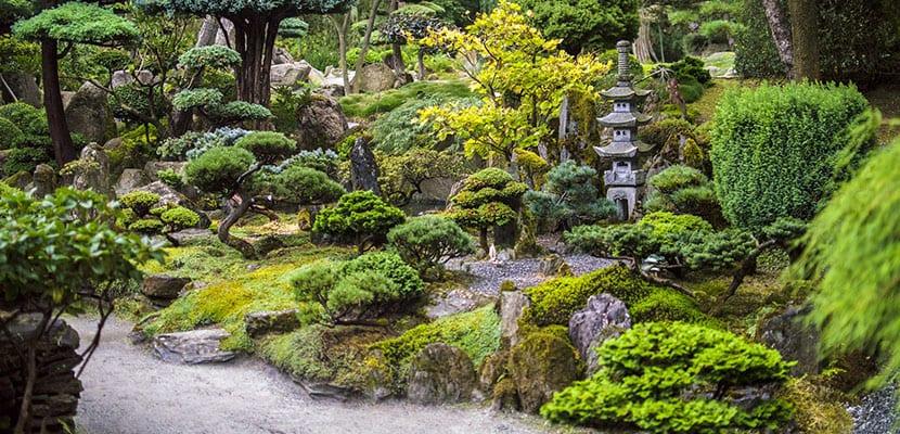 Jardines con plantas