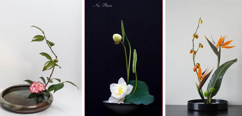 Ikebana en recipientes bajos