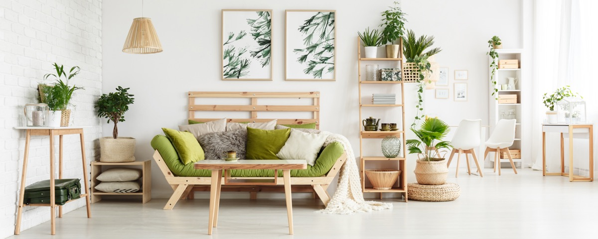 salon con plantas
