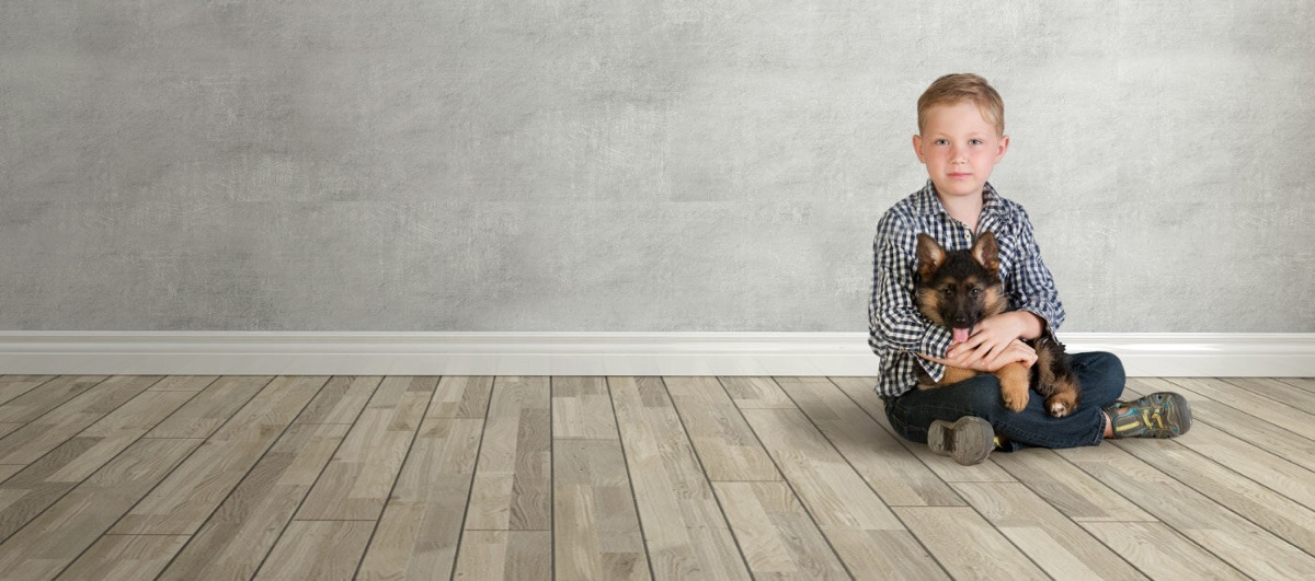 suelos de mascotas