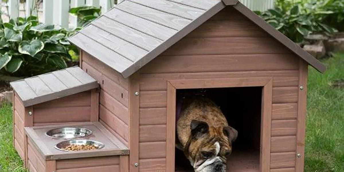 Caseta de perro funcional