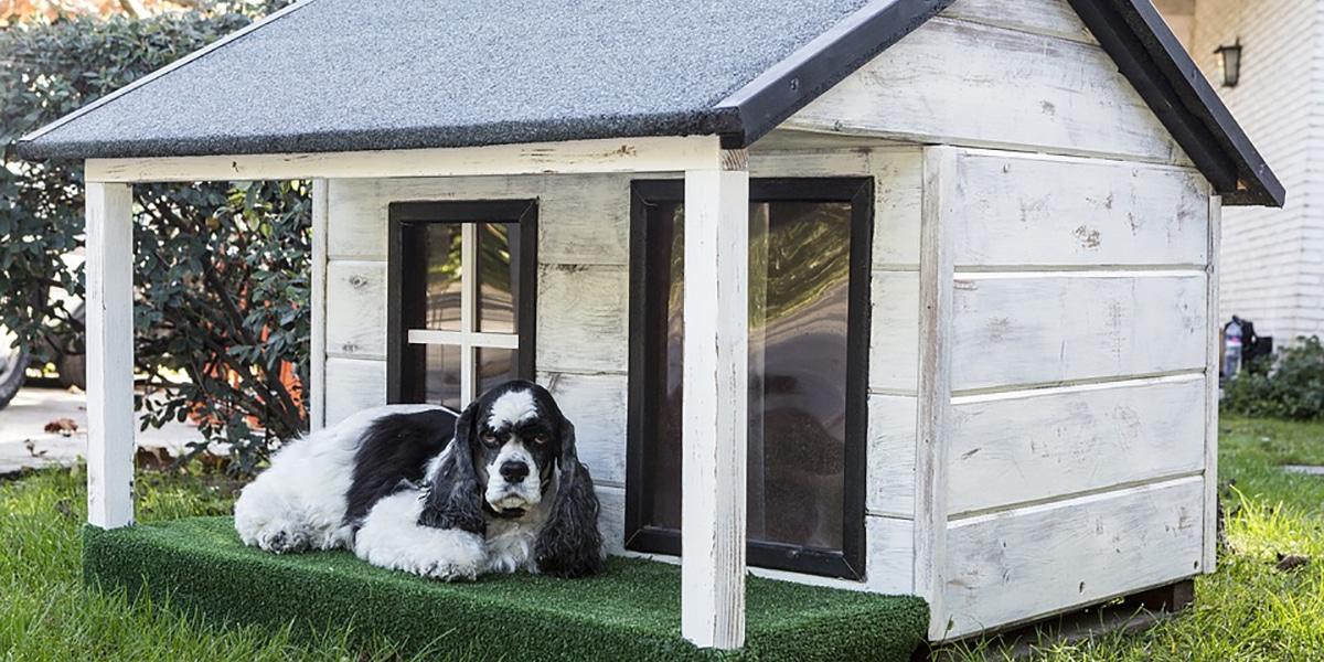 Caseta de perro con porche